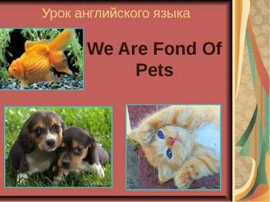 Урок английского языка We Are Fond Of Pets