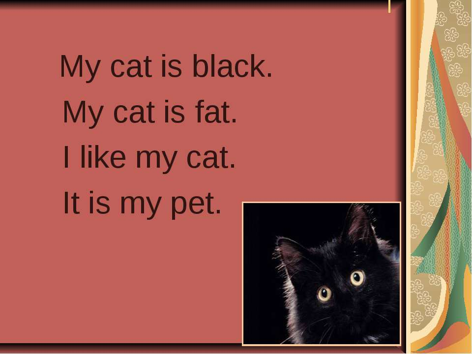 Рассказ о домашнем животном коте на английском языке с переводом для 6 класса