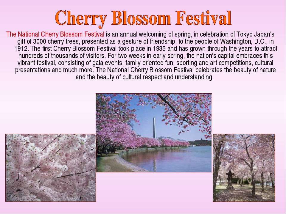 The National Cherry Blossom Festival is an annual welcoming of spring, in cel...