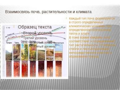 Взаимосвязь почв, растительности и климата Каждый тип почв формируется в стро...