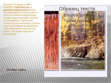 Почвы тайги Большую площадь в тайге занимают подзолистые и дерново-подзолисты...
