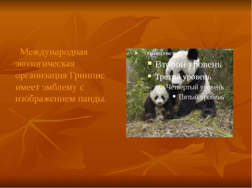 Международная экологическая организация Гринпис имеет эмблему с изображением ...