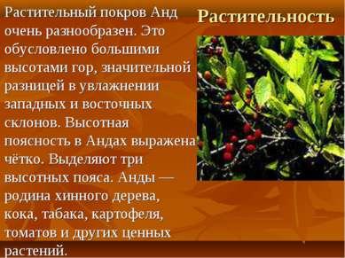 Растительность Растительный покров Анд очень разнообразен. Это обусловлено бо...