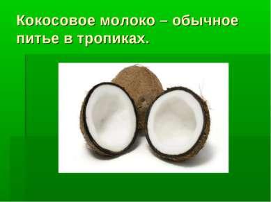 Кокосовое молоко – обычное питье в тропиках.