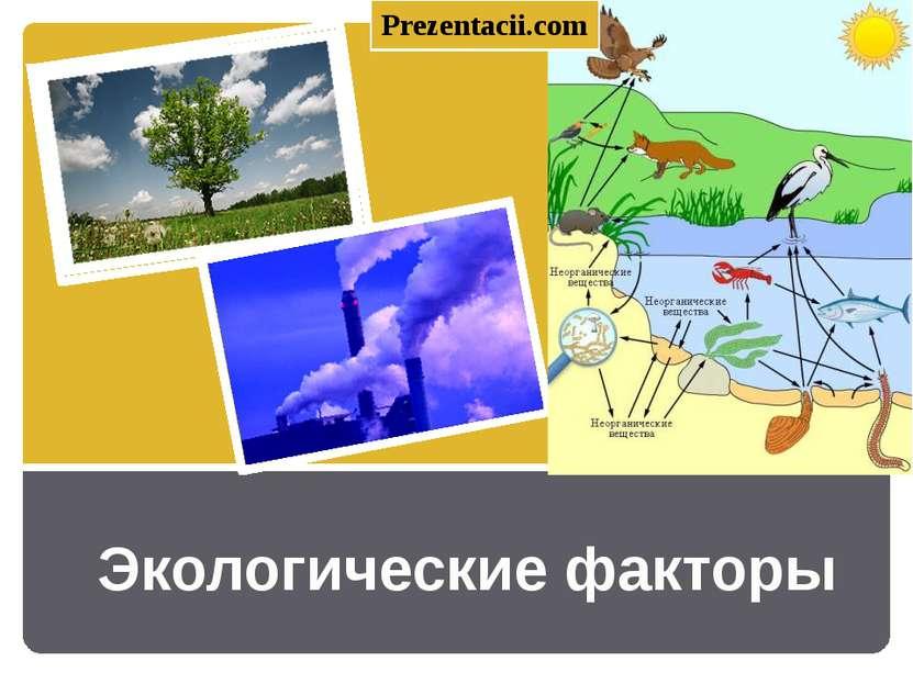 Экологические факторы Prezentacii.com
