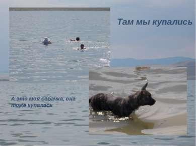 Там мы купались А это моя собачка, она тоже купалась
