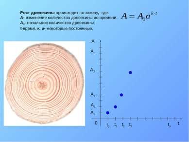 Рост древесины происходит по закону, где: A- изменение количества древесины в...