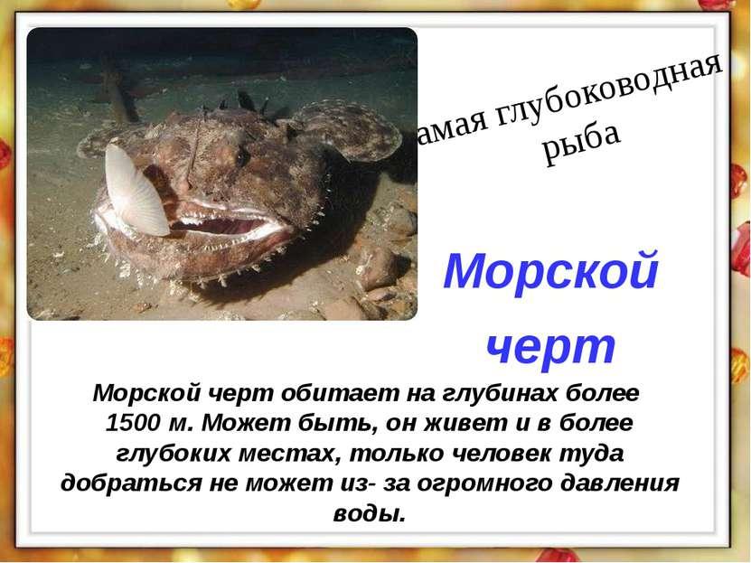 Морской черт обитает на глубинах более 1500 м. Может быть, он живет и в более...