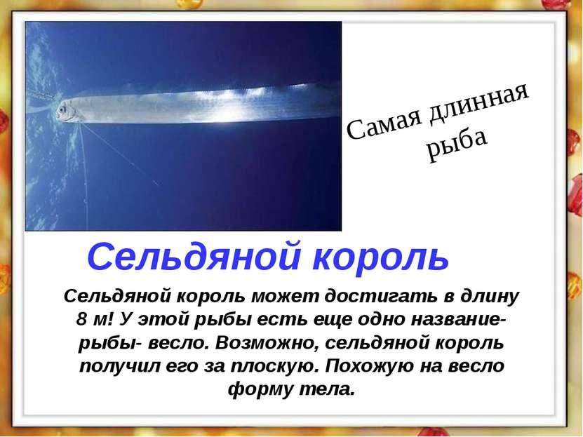 Сельдяной король может достигать в длину 8 м! У этой рыбы есть еще одно назва...