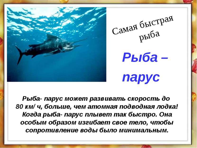 Рыба- парус может развивать скорость до 80 км/ ч, больше, чем атомная подводн...
