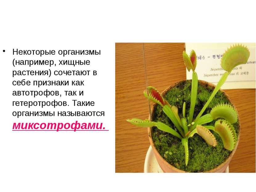 Некоторые организмы (например, хищные растения) сочетают в себе признаки как ...