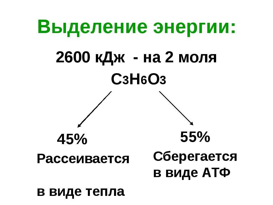 Суммарное уравнение: 1. С6Н12О6 + 2АДФ + 2Н3РО4= 2С3Н6О3 + 2АТФ+2Н2О 2. 2С3Н6...
