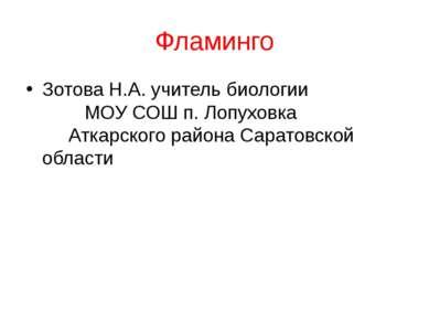 Фламинго Зотова Н.А. учитель биологии МОУ СОШ п. Лопуховка Аткарского района ...