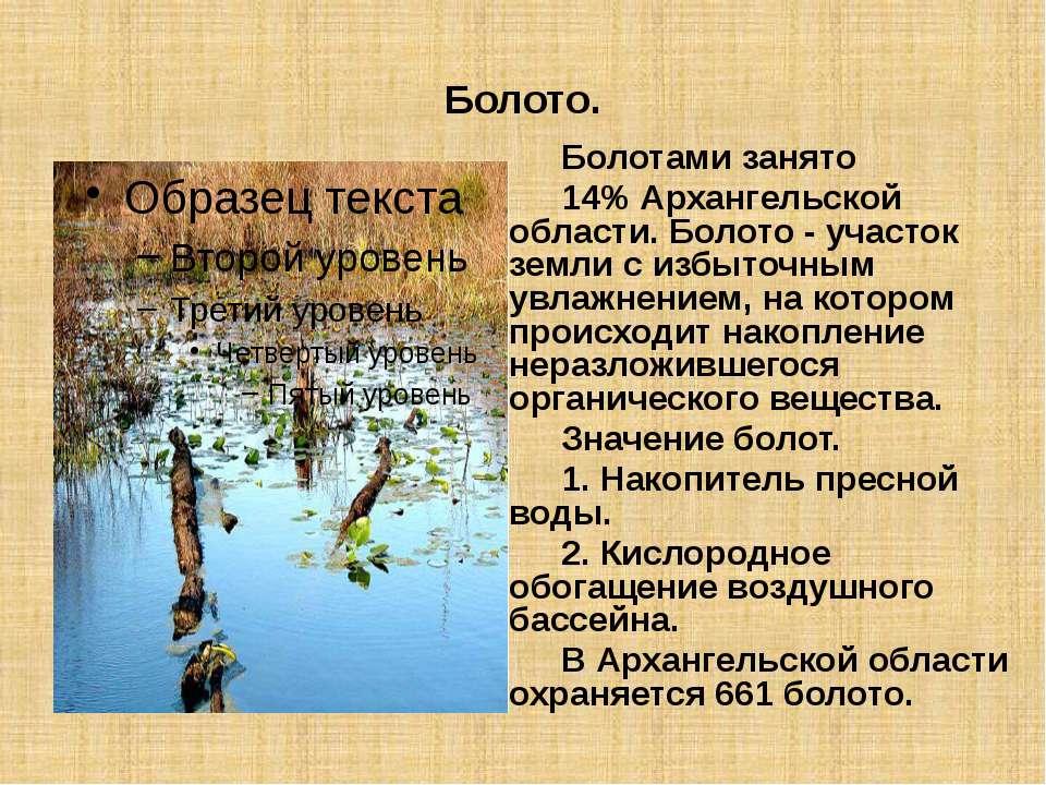 Болото. Болотами занято 14% Архангельской области. Болото - участок земли с и...