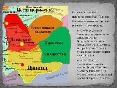 Перед монгольским нашествием на Русь Галицко-Волынское княжество успело расши...