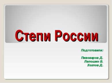 Степи России Подготовили: Пивоваров Д. Лапошин В. Хохлов Д.