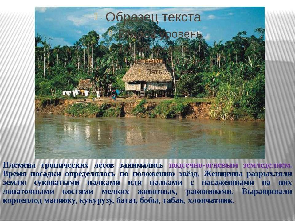 Для рыбной ловли сооружались лодки из древесной коры и долблёнки-однодеревки....
