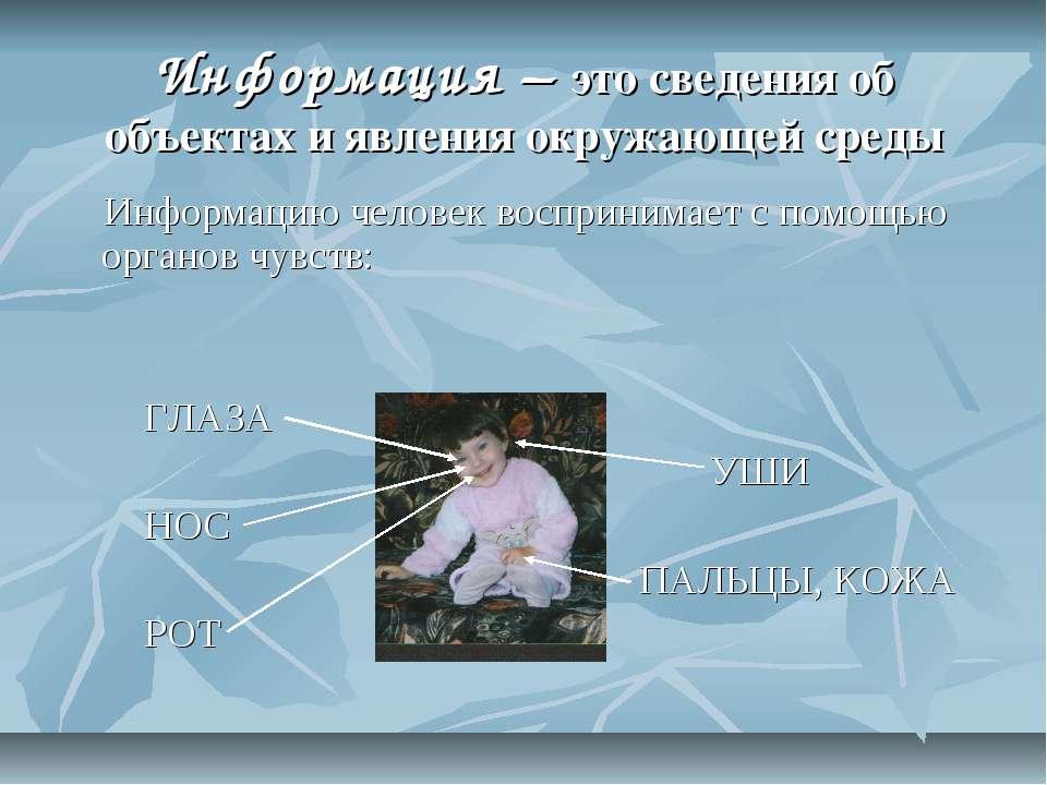 Информация – это сведения об объектах и явления окружающей среды Информацию ч...