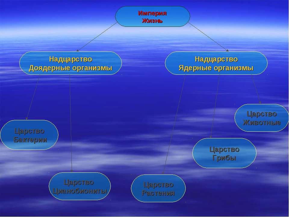 Империя Жизнь Надцарство Доядерные организмы Царство Бактерии Царство Растени...