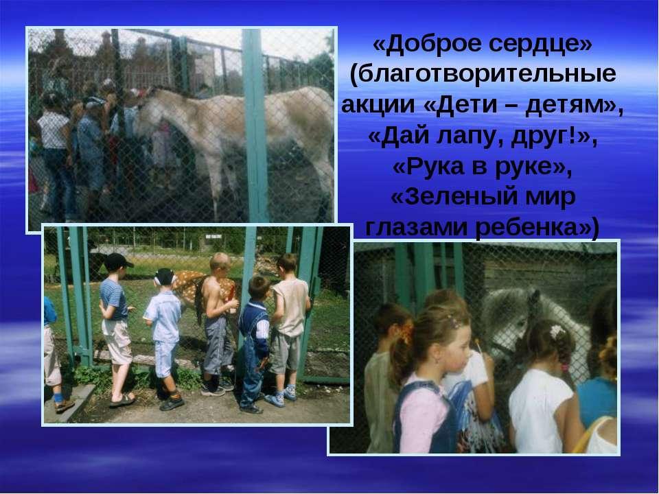 «Доброе сердце» (благотворительные акции «Дети – детям», «Дай лапу, друг!», «...