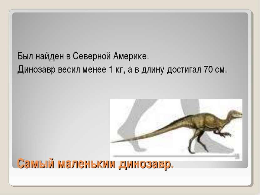 Самый маленький динозавр. Был найден в Северной Америке. Динозавр весил менее...