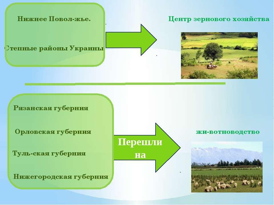 жи вотноводство Центр зернового хозяйства Нижнее Повол жье. Степные районы Ук...
