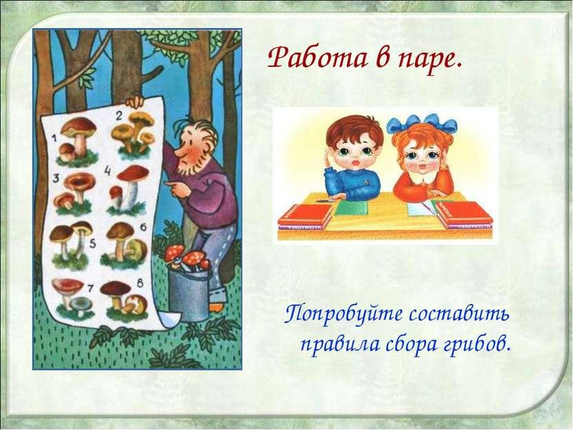 Работа в паре. Попробуйте составить правила сбора грибов.