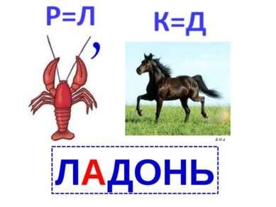 ЛАДОНЬ