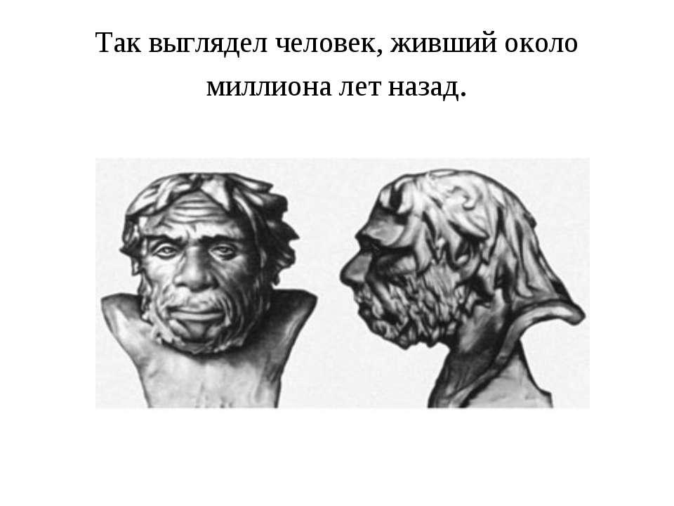 Так выглядел человек, живший около миллиона лет назад.