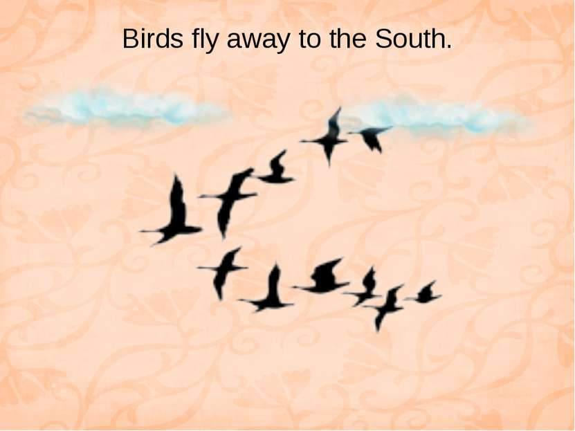Birds fly away to the South.