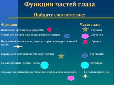 Функции частей глаза Найдите соответствие: