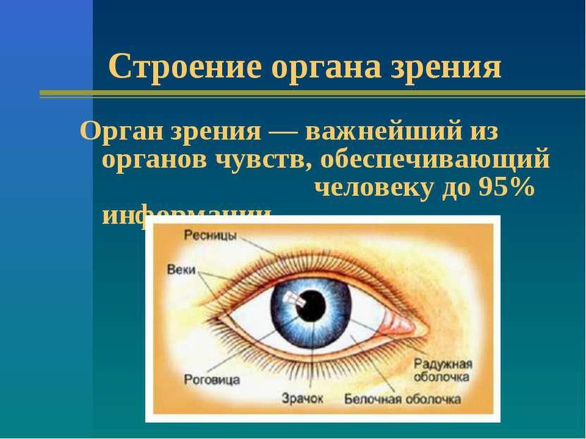 Строение органа зрения Орган зрения — важнейший из органов чувств, обеспечива...