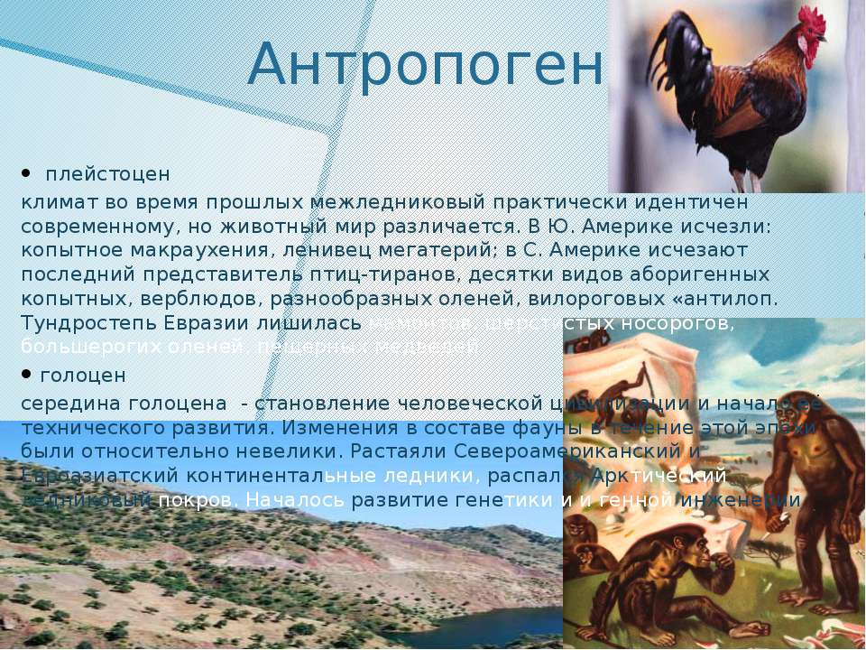 Антропоген плейстоцен климат во время прошлых межледниковый практически идент...