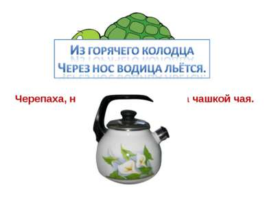 Черепаха, не скучая, час сидит за чашкой чая.