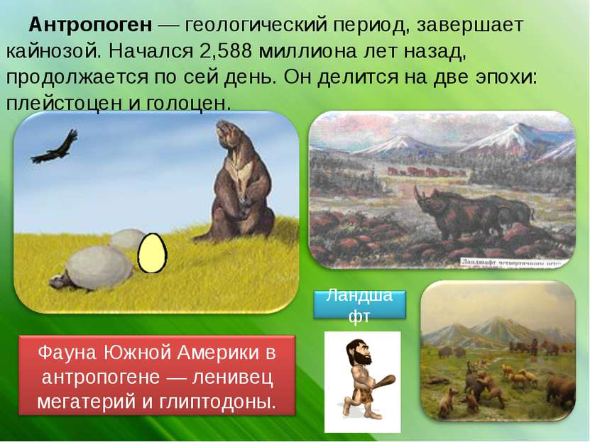 Антропоген— геологический период, завершает кайнозой. Начался 2,588 миллиона...