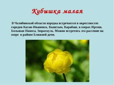 Кубышка малая В Челябинской области изредка встречается в окрестностях городо...