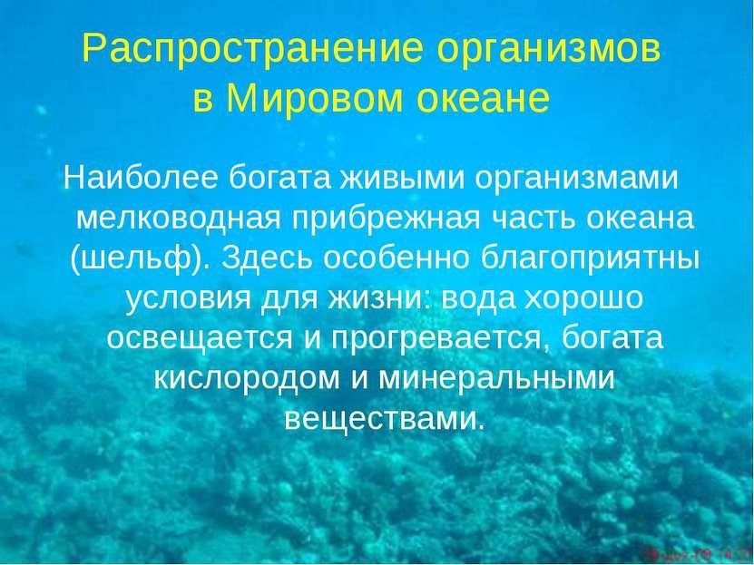 Распространение организмов в Мировом океане Наиболее богата живыми организмам...