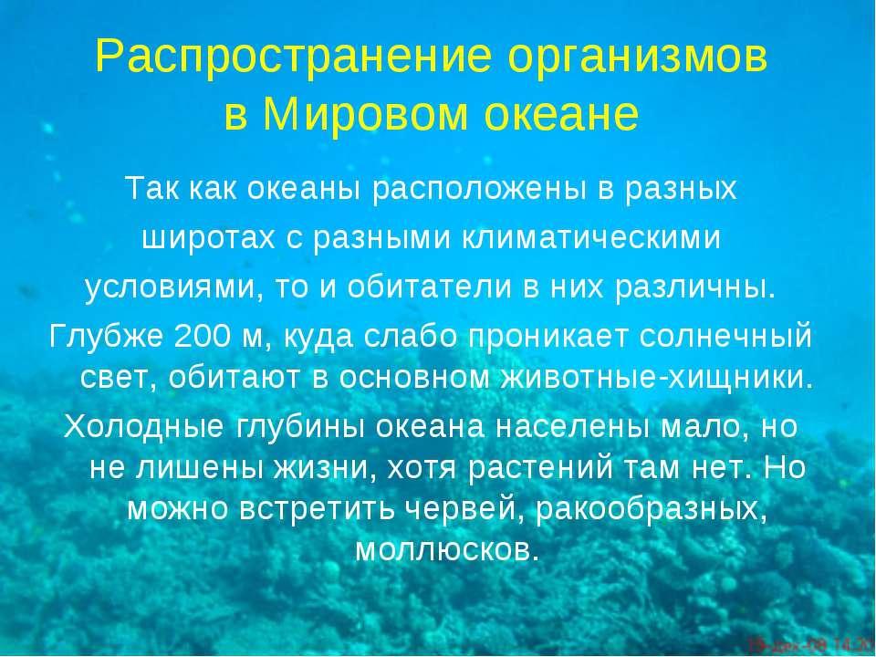 Распространение организмов в Мировом океане Так как океаны расположены в разн...