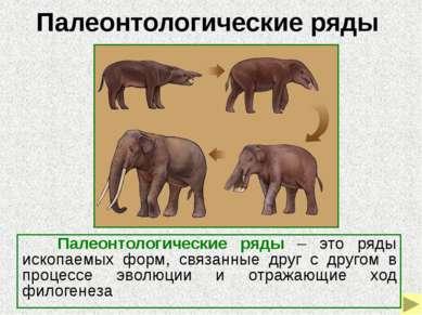 Владимир Онуфриевич Ковалевский (1842-1883) - известный русский зоолог, основ...
