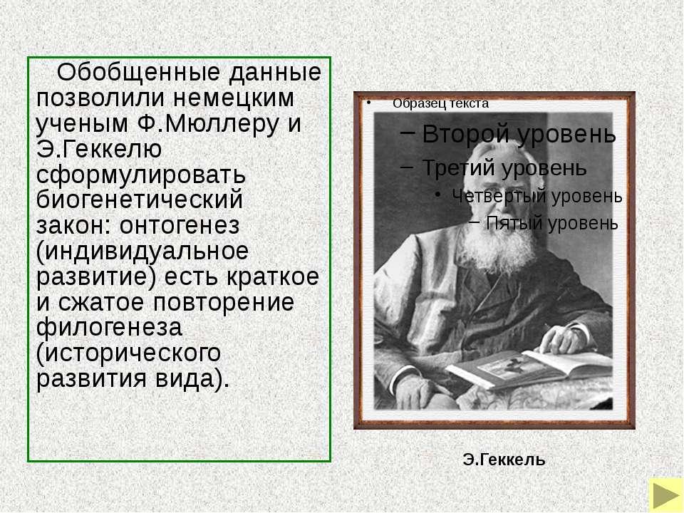 Биогенетический закон был развит и уточнен российским ученым А.Н.Северцовым, ...