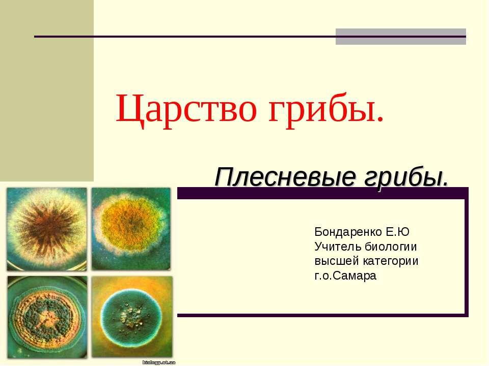 Царство грибы. Плесневые грибы. Бондаренко Е.Ю Учитель биологии высшей катего...