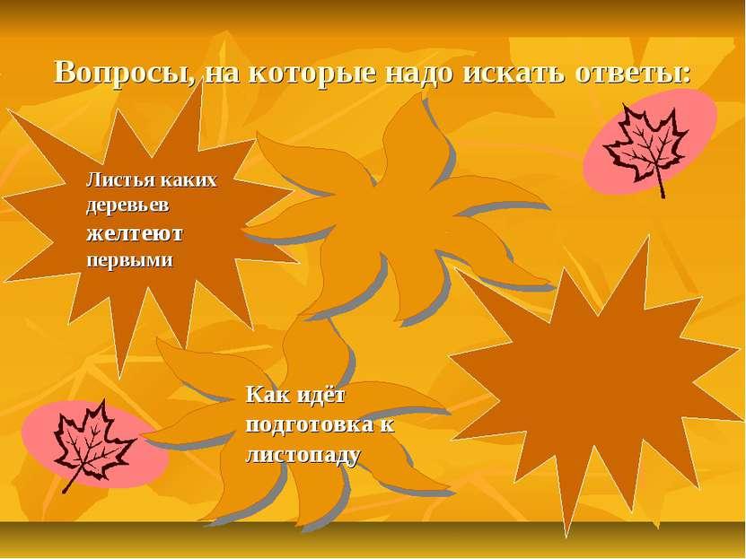 Вопросы, на которые надо искать ответы: Как идёт подготовка к листопаду Листь...