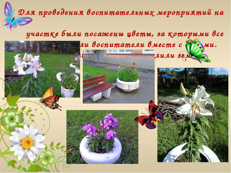 Для проведения воспитательных мероприятий на участке были посажены цветы, за ...