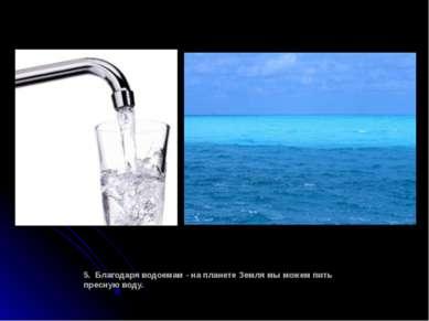 5. Благодаря водоемам - на планете Земля мы можем пить пресную воду.