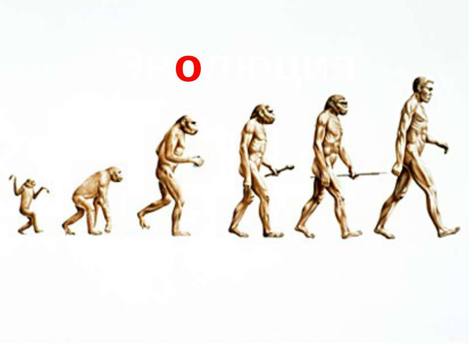 the life history of charles robert darwin the founder of the theory of evolution