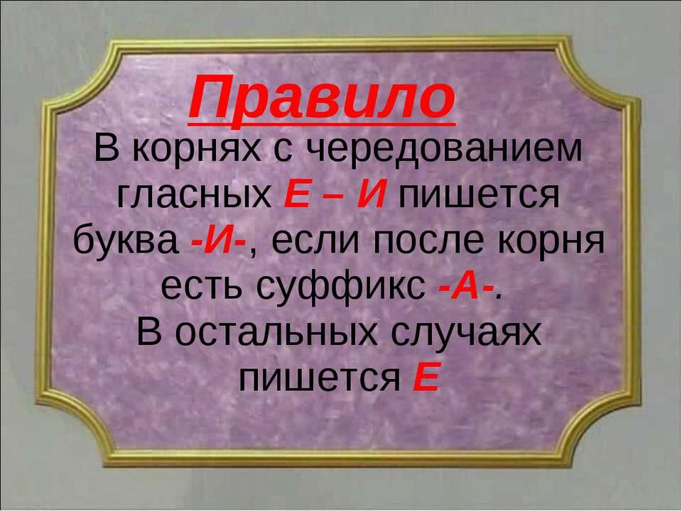 В корнях с чередованием гласных Е – И пишется буква -И-, если после корня ест...
