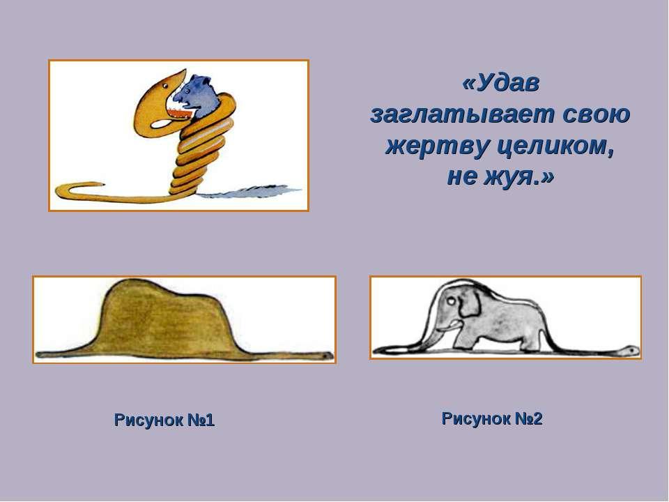 «Удав заглатывает свою жертву целиком, не жуя.» Рисунок №1 Рисунок №2