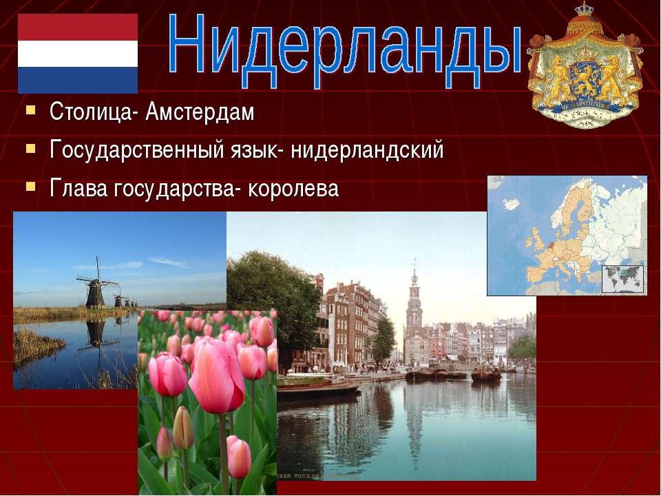 Столица- Амстердам Государственный язык- нидерландский Глава государства- кор...