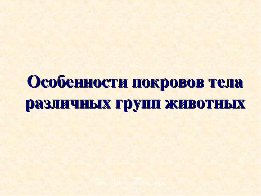 Особенности покровов тела различных групп животных МБОУ СОШ №4 с.Раевский учи...
