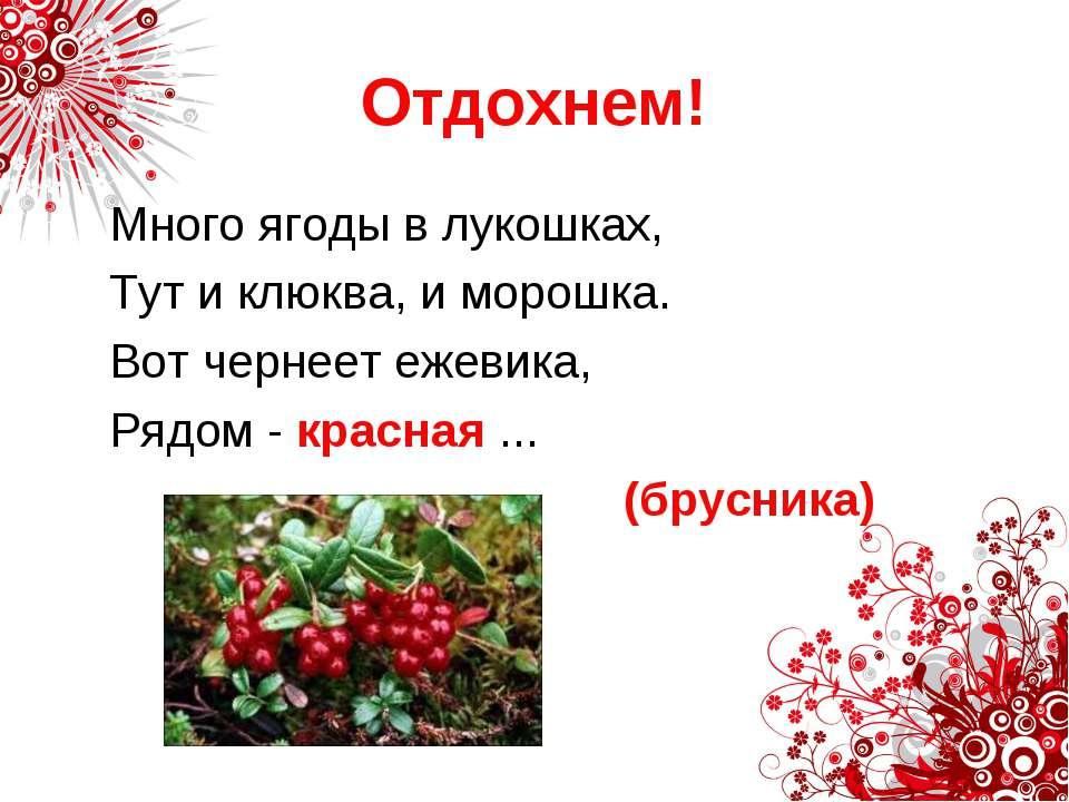 Отдохнем! Много ягоды в лукошках, Тут и клюква, и морошка. Вот чернеет ежевик...